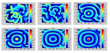 Мгновенные снимки мембранных потенциалов. Вытеснение спирального хаоса из сердечной мышцы с помощью локализованного слабого внешнего периодического воздействия (красный цвет – возбужденные участки).